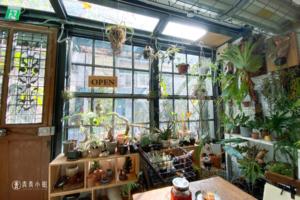 【台北】如魔法屋場景般的咖啡廳 小青苑 cyan cafe 珍奇植物 鹿角蕨