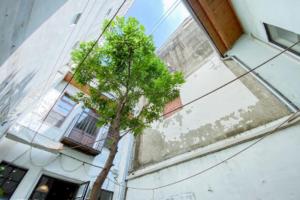 【台南】Laile來了 就住一晚-民宿-老屋-文青風老宅公寓